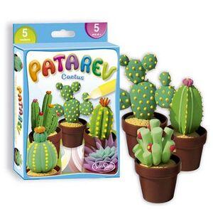 Patarev mini cactus